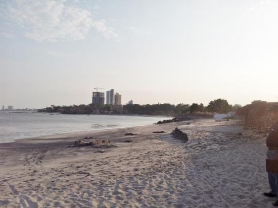 Beach Lot For Sale in Playa Gorgona Panama