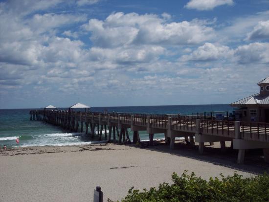 JUNO BEACH HOME AND CONDO SEARCH