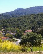 Homes For Sale by Sophia Delacotte Realtor in Almaden Valley