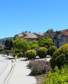 Homes For Sale in Almaden Valley by Sophia Delacotte San Jose Realtor