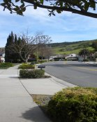 Homes For Sale in Santa Teresa in San Jose CA