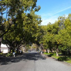 Homes in Willow Glen in San Jose CA