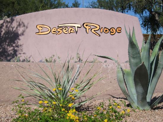 Homes for Sale in Desert Ridge