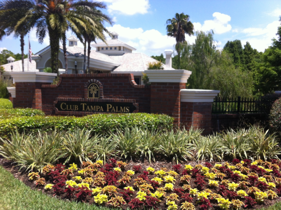 Homes for Sale in Tampa Palms