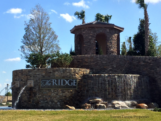 Homes for Sale in The Ridge at Wiregrass