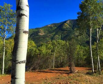 6726 E Geronimo Trail