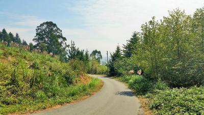 McVay Creek Ln.