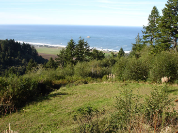 Big Wide OCEAN VIEWS!!!!, Smith River, CA 95567