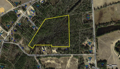 Tapestry Road (15.81+/-  Acres)