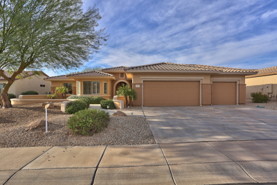 16341 W Badger Pass Lane, Surprise, AZ 85387