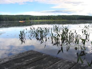 167 Lake Edward Road