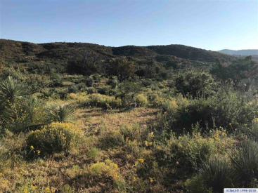 Burro Springs Ranch, Silver City, NM 88061