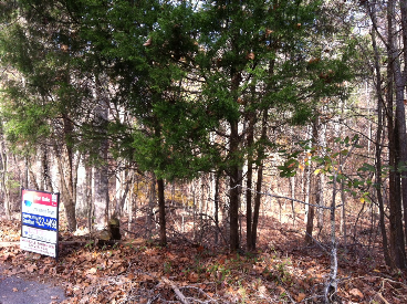 Lot 667 Teaberry Ct