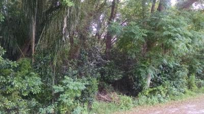 Sterner Road