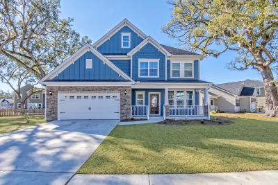 163 Daniels Ridge Way, SUMMERVILLE, SC 29485
