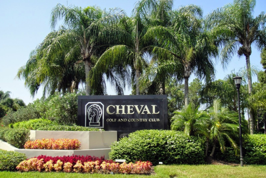 Cheval Homes for Sale