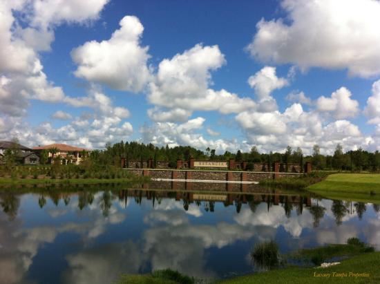 Estancia Homes for Sale in Wesley Chapel, FL 33543