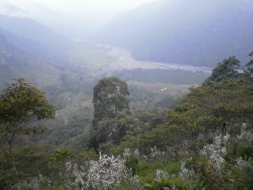 Tapanti Trout Trail, Orosi,
