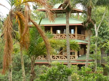5000 La Flora, Tucurrique- Cartago,