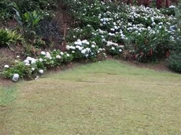 1750 Tapanti Park Rd, Orosi Valley,