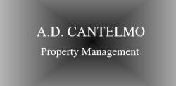 A.D. CANTELMO REALTY/TONY CANTELMO